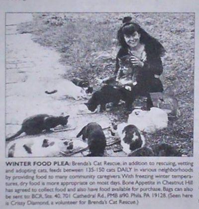 Brenda's Cat Rescue winter food plea